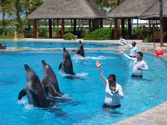 BBarcelo Maya Grand Resort